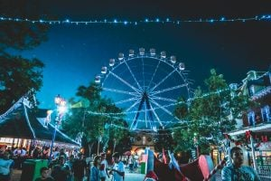 festival with a ferris wheel in the background