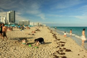 Kids playing in sand on some of Miami's beaches
