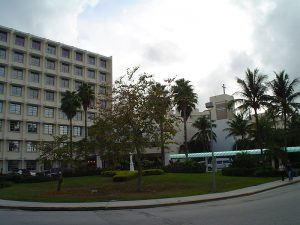 Area of Coconut Grove.