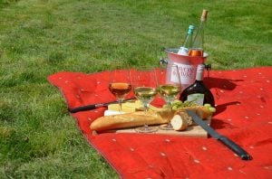 A picnic blanket with meals and wine that can truly make moving from Florida enjoyable
