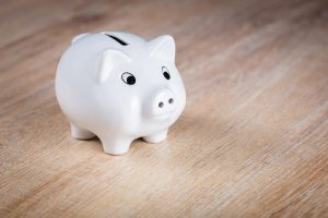 A piggy bank; with our advice, you will be able to fill it and build a tool shed under budget.
