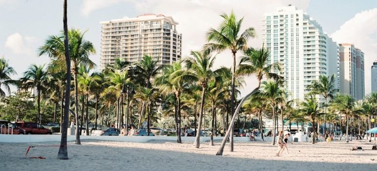 Sunny weather with palm trees on the beach with some hotels